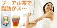 体脂肪を考えるお茶(プーアル茶)カップ用ティーバック2g×20包