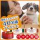 【ブログなしOK★現品プレゼント】愛犬の健康サプリ【お写真+感想モニター40名】/モニター・サンプル企画