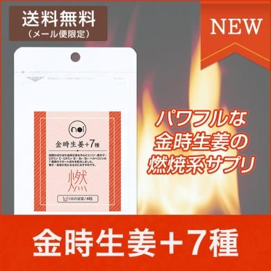 【楽天】 noi 金時生姜+7種