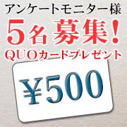 プレミアムショッピング(株式会社ステップワールド運営)の取り扱い商品「QUOカード(500円分)」の画像