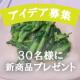 【春野菜で美味しいおだし料理アイデア大募集】30名様に新商品プレゼント!