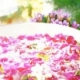 イベント「お花画像の投稿で、フラワーエッセンスの人気商品をプレゼント!」の画像
