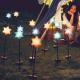 イベント「【ecolor】きらきら星のソーラーガーデンライトでお庭もキャンプも星降る夜に♪」の画像