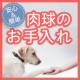 【犬モデル募集】ワンちゃんの飼い主さん必見!マイナスイオン水で肉球お手入れ♪