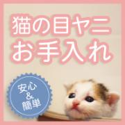 「【猫モデル大募集】猫の目ヤニに悩む飼い主さん必見!マイナスイオン水で簡単お手入れ」の画像、株式会社ラクピュアのモニター・サンプル企画