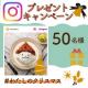 イベント「\味噌を50名様に/#わたしのクリスマス Instagramキャンペーン」の画像