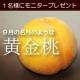 イベント「9月の名月のように美しい「黄金桃」1名様にプレゼント ブルームーン緊急企画!」の画像