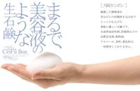 無添加石鹸 大阪セシボン