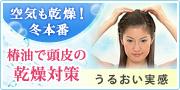 大島椿 頭皮ケア
