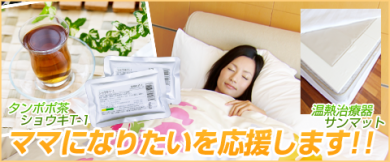 不妊 冷え性 タンポポ茶 対策 効果 サンマット