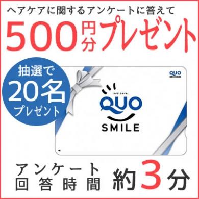 アンケートに答えてQUOカード500円分×20名様