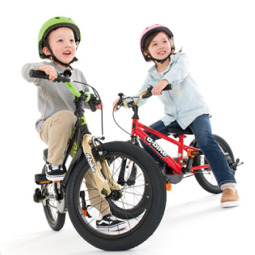 ディーバイクマスター / D-Bike MASTER