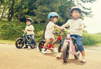 ディーバイクキックス V / D-Bike KIX V