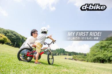 ディーバイクマスタ16 ホンダ / D-bike Master16 Honda