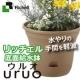 面倒な水やりの手間を軽減!おしゃれな植木鉢 ウルオポット