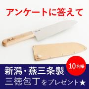 【アンケート】ホームページを見た感想を答えて、燕三条製のかわいい包丁をGET!!