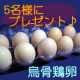 イベント「【松本ファーム】 烏骨鶏卵人気No.1 <モニター募集♪♪>」の画像