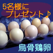 「【松本ファーム】 お中元に「烏骨鶏の卵」いかが? <モニター募集♪♪>」の画像、有限会社松本ファームのモニター・サンプル企画