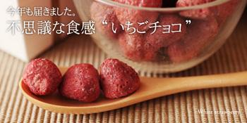 アンジェ web shop 【不思議食感 いちごチョコレート】