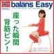 イベント「[第2回] 背筋ピン!Sakamoto houseのバランスチェア・イージー」の画像
