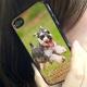 イベント「世界でひとつのiPhoneケース☆ペット写真コンテスト☆エコカラー」の画像