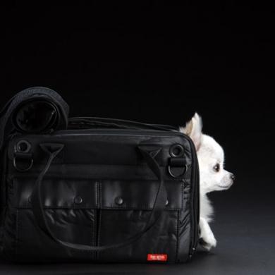 愛犬も満足!最高峰のスペックを備えたDUCAシリーズ