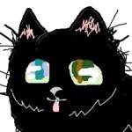 編み物好きな猫の記録