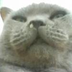 かずかるさんのプロフィール画像