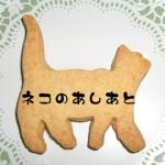 猫の手さんのプロフィール画像