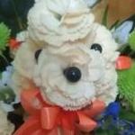 ayammyさんのプロフィール画像