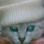 ピンクフラペチーノさんのプロフィール画像