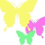 青紫蝶さんのプロフィール画像