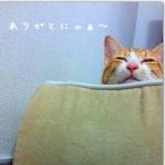 ゆっきー♂☆さんのプロフィール画像
