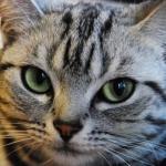 takaさんのプロフィール画像