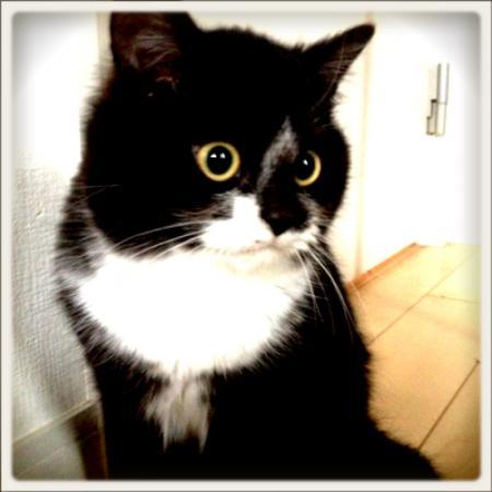 まりんさんのプロフィール画像