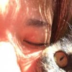 チョコミさんのプロフィール画像