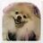花*rin☆さんのプロフィール画像