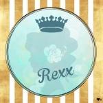 rexxさんのプロフィール画像