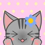 淡雪さんのプロフィール画像