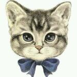 mimiさんのプロフィール画像
