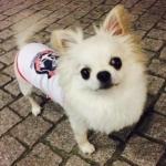 rikuさんのプロフィール画像