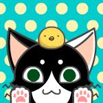 背猫さんのプロフィール画像