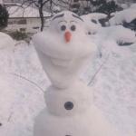 natuさんのプロフィール画像