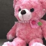 pinkumaさんのプロフィール画像