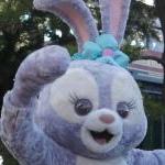 うさぎさんのプロフィール画像