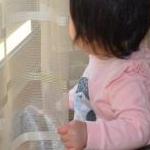 ゆんちゃんさんのプロフィール画像