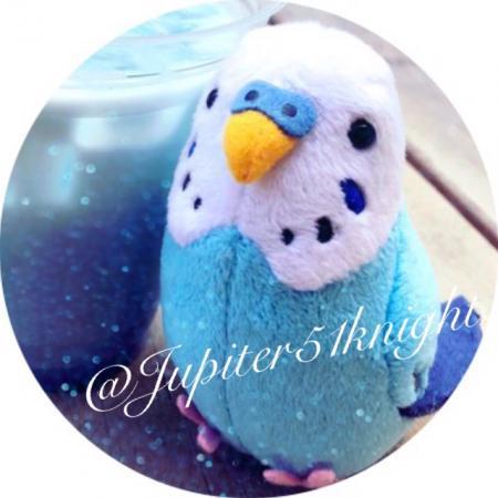 Jupiter51knightさんのプロフィール画像