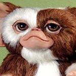 maemaeさんのプロフィール画像
