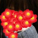 ミカンドリ☆さんのプロフィール画像