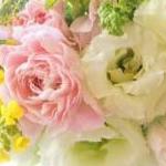 kanorihoさんのプロフィール画像